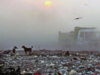 BMC appoints NEERI to monitor pollution at dumping ground