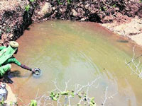 Near Imphal, hope floats for polluted Northeast lakes