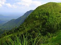 Western Ghats: green tribunal asks Ministry to clarify on fresh survey