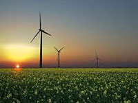 Second auction of wind power projects: Tariff tumbles to Rs 3.42 a unit